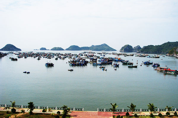 Ha Long Bay Cat Ba 4 days