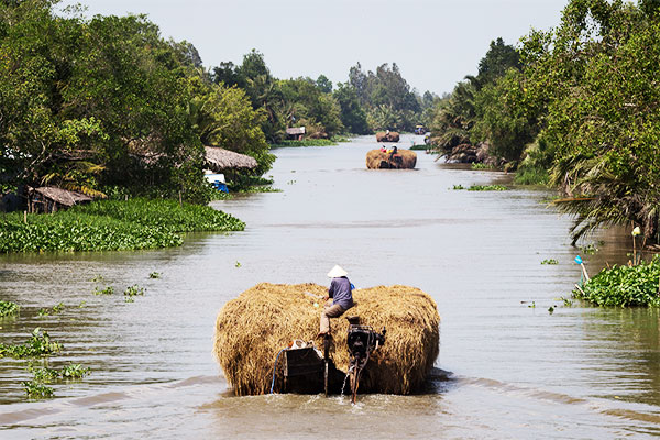 Cruise in the Mekong delta 3 days